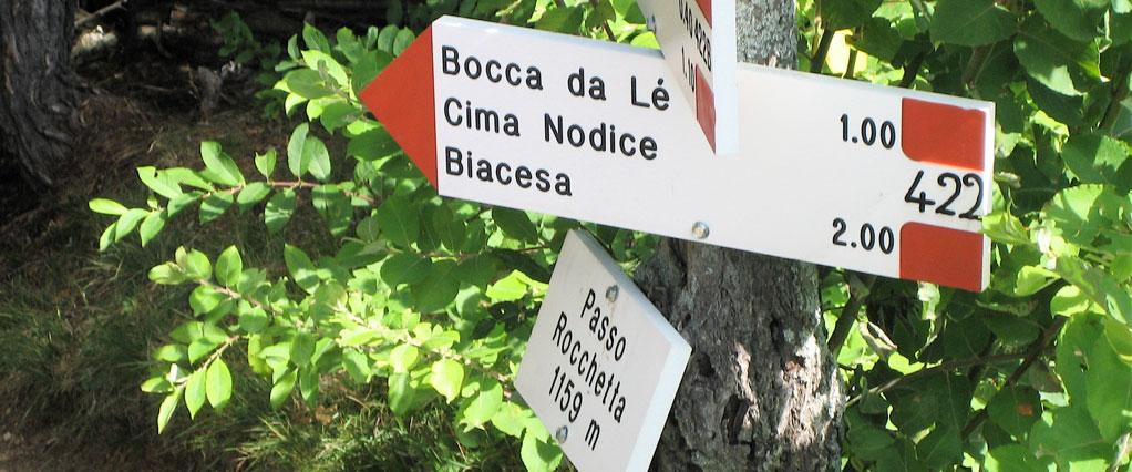 GO WILD - Über die Alpen zum Garda See Image